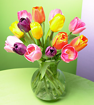 20 Stem of Beautiful Tulip Bouquet