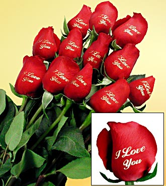 "One Dozen Speaking ""I Love You"" Red Roses"